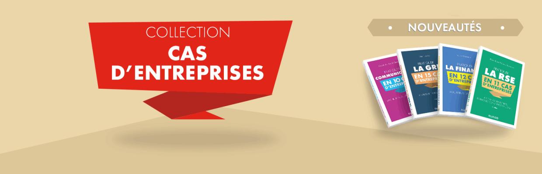 """Découvrez la nouvelle collection """"Cas d'Entreprises"""" de Dunod"""