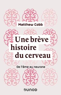 Une brève histoire du cerveau