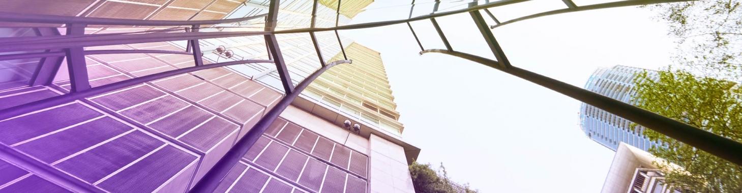 Immobilier, la révolution des biomatériaux