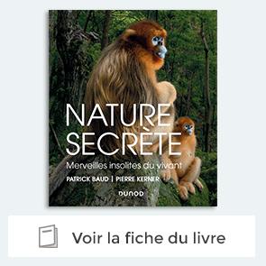 Livre Nature secrete de Patrick baud et Pierre Kerner