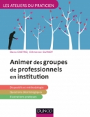 Animer des groupes professionnels en institution