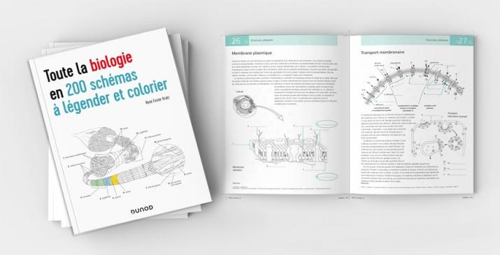 Biologie 200 schémas à colorier et légender