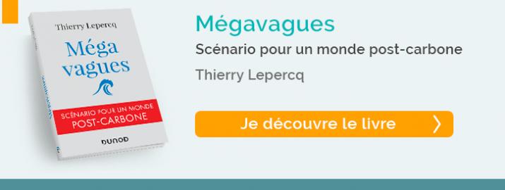 Je découvre le livre Mégavagues de Thierry Lepercq