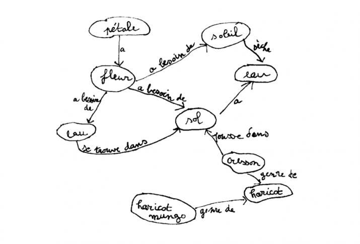 Exemple d'une carte conceptuelle faite par un enfant de 6 ans.