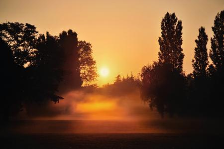 photo : soleil brumeux