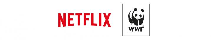 Netflix WWF France