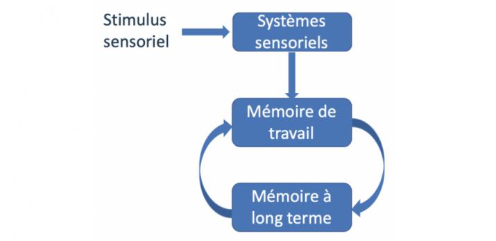 Mémoires, stimulus sensoriel