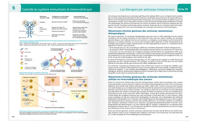 P148-149 de l'atlas d'immunologie
