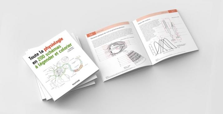 Physiologie, 200 schémas à colorier et légender