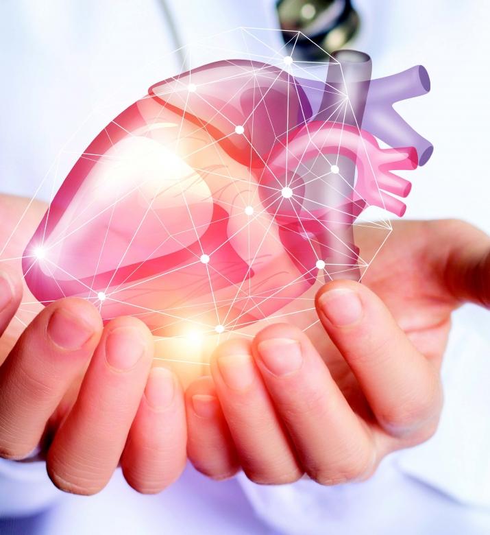 Santé, Impression 3D d'un coeur